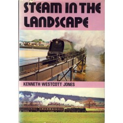 Steam in the Landscape